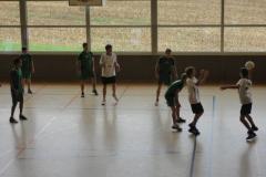2011 Korb- und Volleyballturnier